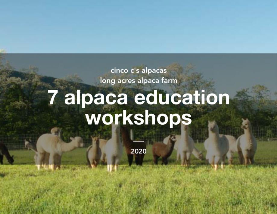 7 Alpaca Education Workshops