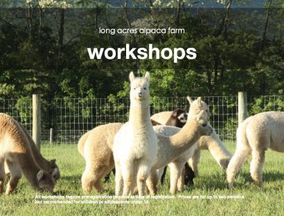 Alpaca Workshops